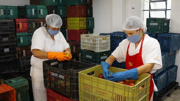 Prefeitura distribuiu no primeiro trimestre de 2021, mais de 90 toneladas de legumes e verduras aos munícipes